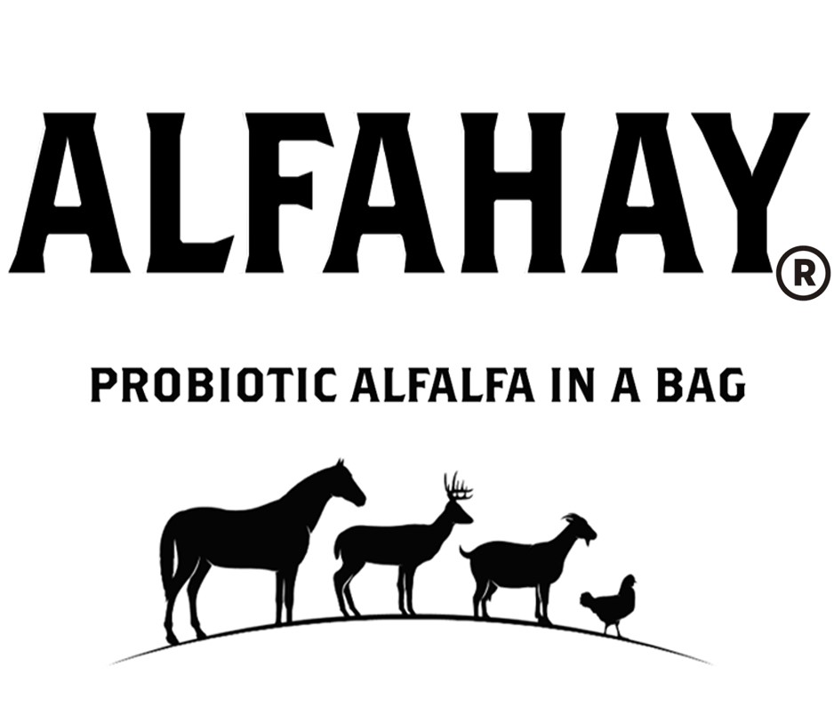 Learn more about AlphaHay